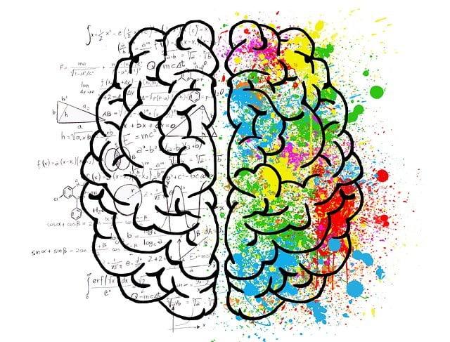 bebek beyin gelişimi